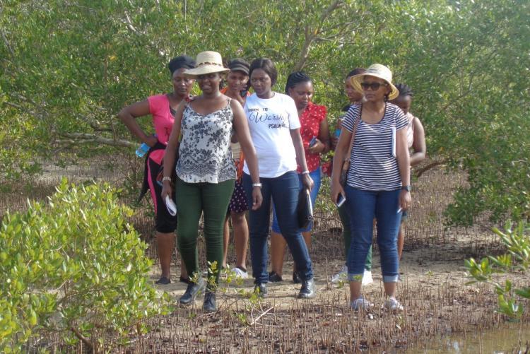 Postgraduate Field trip held on 29th Sep, 2019